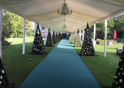 Purvis Marquees, Wedding Walkway, VIP Wedding
